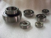 All Kart Bearings (Individually)